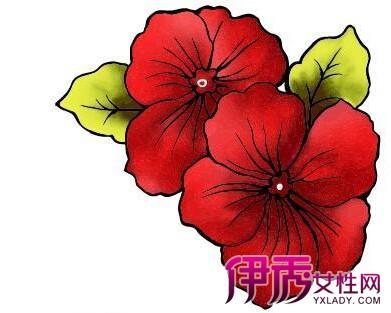 【图】彩铅手绘小清新花朵图片欣赏