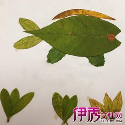 树叶拼图图片大全