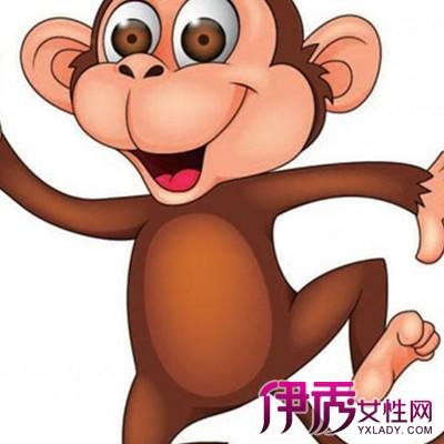 【图】猴子图片大全卡通欣赏