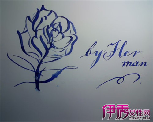 玫瑰花简笔画图片大全