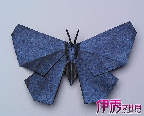 图】DIY简易折纸大全图解 蝴蝶和莲花的折纸方法-简易折纸大全图解图片