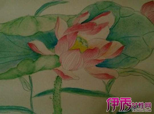 【图】彩色铅笔画荷花图片大全 盘点彩色荷花的画法-彩色铅笔画荷花