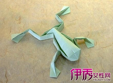 【青蛙折纸大全 图解】【图】分享青蛙折纸大全图解