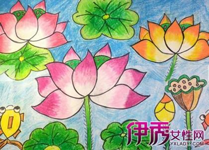 荷叶和荷花简笔画如下:可以填充颜色,例如荷叶使用绿色,荷花