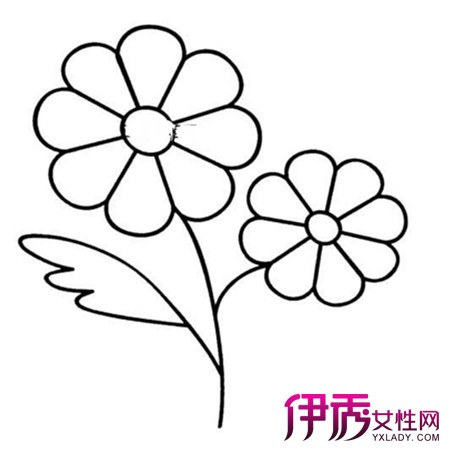 幼儿花朵简笔画 百合花