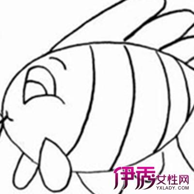 【图】幼儿园小鱼简笔画图片欣赏 彰显儿童丰富的想象力