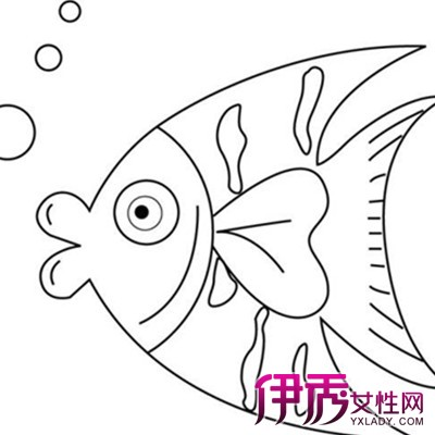 幼儿园简笔画鱼图片图片
