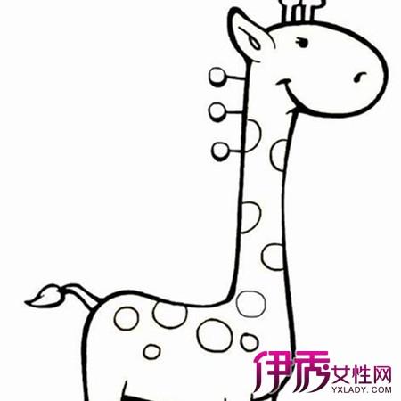 【图】教儿童简笔画狗 掌握7个要点简单轻松-应掌握儿童动向