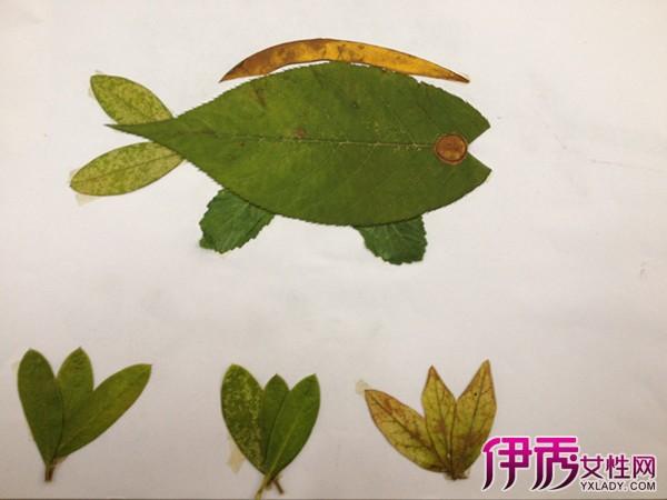 幼儿树叶拼图
