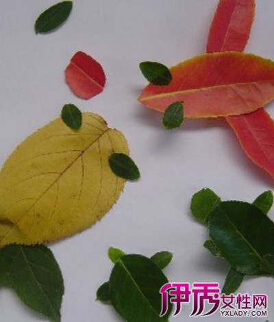 【图】幼儿园树叶手工贴画欣赏
