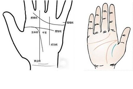 【掌纹】【图】掌纹的秘密全操作图解你其中苦杏仁告诉方法及注意事项图片