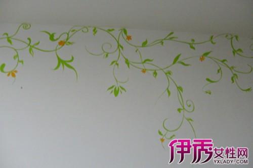 【图】手绘藤蔓植物图片欣赏 室外藤蔓植物有哪些?