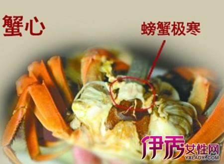 所以对海鲜尤其是螃蟹的吃法不是很明白,以前在大连,青岛都工作过,有