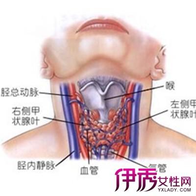 症状图片大全 淋巴结的种类以及治疗方法-淋巴炎的症状图片