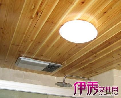 【图】吊顶的木板有白蚁如何处理 房屋装修前要先预防