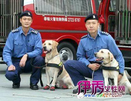 香港消防处 级别_香港消防_香港消防局_香港消