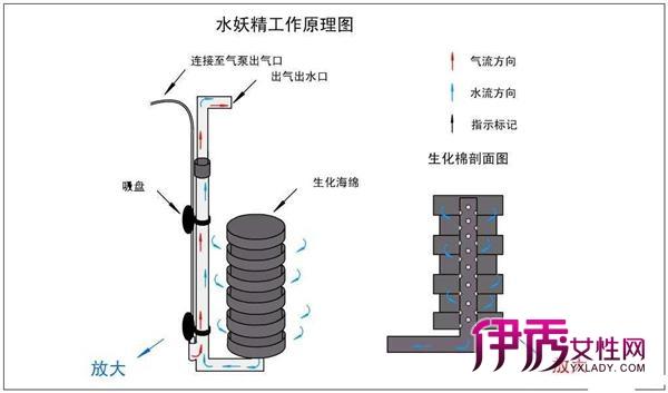鱼缸过滤器结构
