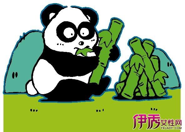 【图】大熊猫的生活习性 可爱大熊猫的特点介绍