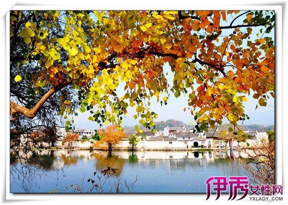 天坛公园杏花什么时候开?天坛公园杏花林是北京五环内最大的一片杏花林,每年3月底4月初开放。赏杏花之余,您还可以赏丁香花、玉兰花、海棠花等花卉,观千年古柏,是北京春天踏青的好去处。 很少有人知道天坛公园还有清代的杏花林。其实天坛公园的杏花林是北京五环内最大的一片杏花林。棵棵都是老树,清代种植。开起花来,每一棵都很具规模,树形漂亮,不看确实遗憾。4月初,天坛近1万平方米的杏花林区内花苞初放、暗香袭人。赏玩于花间树下,踏青石、转曲径、携花香盈袖,谈笑间自生风雅。天坛林域广袤,芳草青青,更有千年古柏,使您足不出