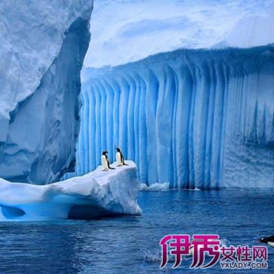 【图】南极大陆为什么是最低温 6个特殊现象你了解过吗?