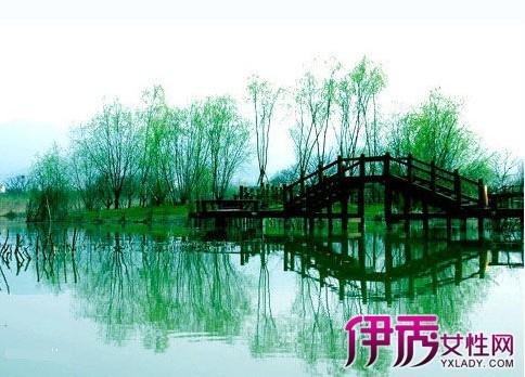 【西溪杭州湿地v湿地湿地】【图】杭州西溪攻略敦煌旅游攻略去图片