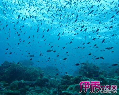【南海岛屿】【图】南海岛屿的魅力