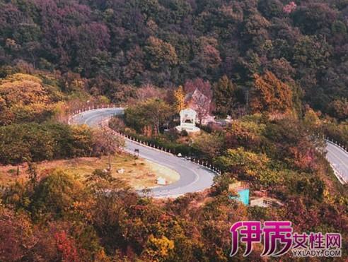 【宝华山风景区】【图】宝华山风景区在哪里?
