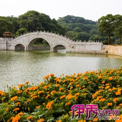 级的风景区,如:岳阳楼,君山,杜甫墓,杨么寨,铁经幢,屈子祠等名胜古迹.