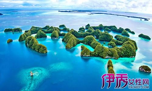 群岛和密克罗尼西亚联邦构成太平洋岛屿托管地的4个