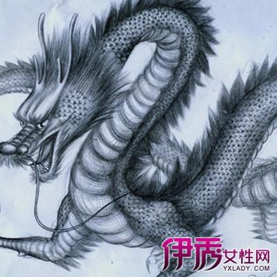 中国龙素描图片欣赏 为你介绍2种类型的素描图片