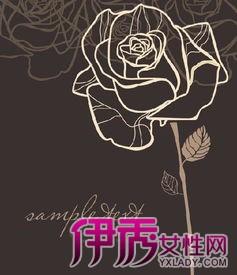 玫瑰花素描简单画法是什么 9个步骤教你画出美丽线条图片
