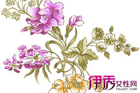 花卉手绘图片欣赏 教你两种素描方法画出栩栩如生的花朵图片