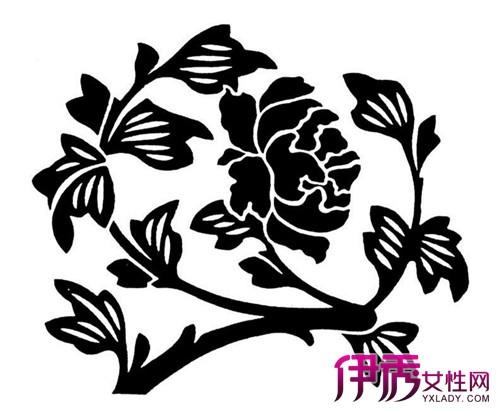 欣赏植物花卉黑白装饰画 教你三步学会绘画要点图片