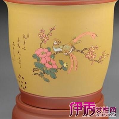 天猫紫砂花盆兰花盆比拼 兰花种植的小秘密图片