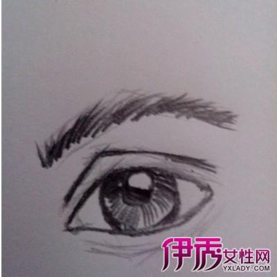 眉毛的画法素描图片