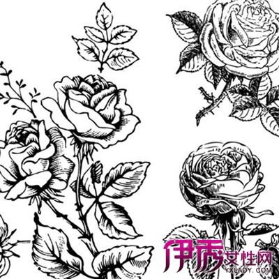 【图】玫瑰花素描图片大全欣赏 6种画法技巧你擅长哪种-玫瑰花素描图图片