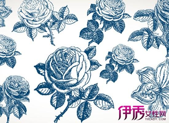 【图】如何简笔画玫瑰花 8个简单小步骤画大作-简笔画玫瑰花图片