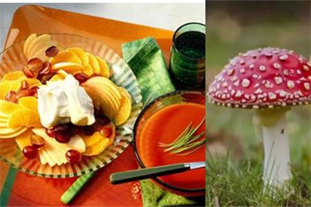 【图】五大饮食健康常识蜂蜜水是否适合早晨喝