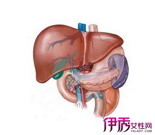 肝血管瘤症状