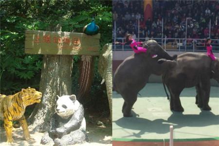 上海动物园游览图_【上海动物园】【图】上海动物园好玩吗 它的地点在哪里_伊秀 ...